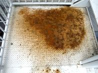 風雨に晒され、外部階段が錆びてしまっています。腐食の進行を防ぐ必要があります。